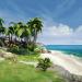 Download Ocean Is Home : Island Life Simulator v0.601 APK