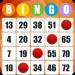 Free Download Absolute Bingo- Free Bingo Games Offline or Online v2.06.002 APK
