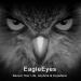 EagleEyes(Lite) v APK Latest Version