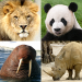 Animals Quiz – Learn All Mammals and Dinosaurs! v3.3.0 APK Download For Android