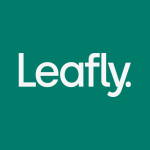 Download Leafly: Find Cannabis and CBD v7.23.0 APK For Android