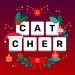 Download Word Catcher. Fillwords: find the words v1.9.2 APK