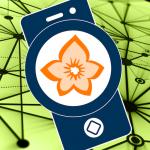 Flora Incognita – automated plant identification v2.9.9 APK New Version