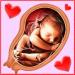 Free Download Pregnancy Week by week v8.00005 APK