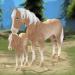 Horse Paradise – My Dream Ranch v2.02 APK Latest Version