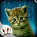 Hidden Mahjong Cat Tails: Free Kitten Game v1.0.41 APK For Android